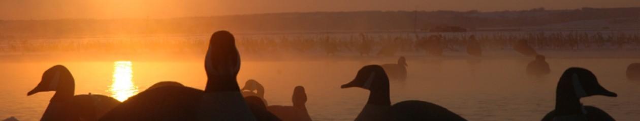 Squaw Creek Hunt Club - 855-473-2875 - Scott Croner - Guided Duck Hunts - Mound City, Missouri